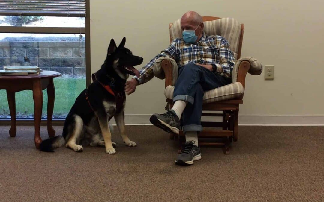 Juggling Caregiving Risks: Seniors  Needs Versus COVID-19